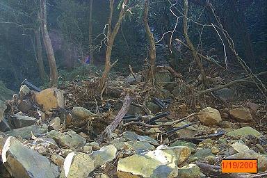 老梅青山瀑布步道輕鬆爬|新北市北海岸(石門區)熱門景點 Tamsui Qingshan waterfall 06