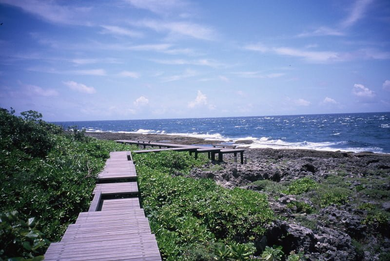 Taiwan Travel around in Pingtung Kenting Coastal trail 迷走客的五天台灣環島旅遊日記