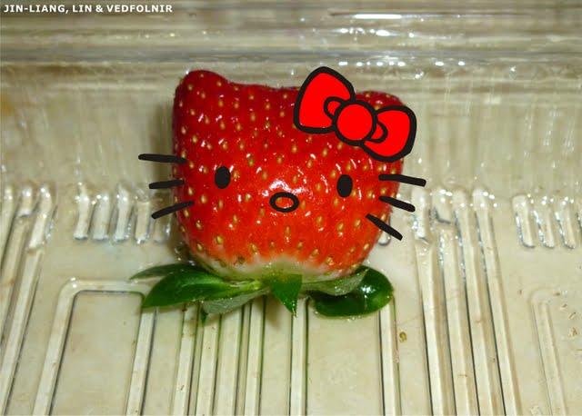 草莓凱蒂貓