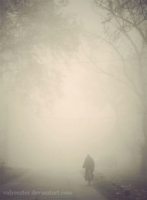 FOG Photography 01 24