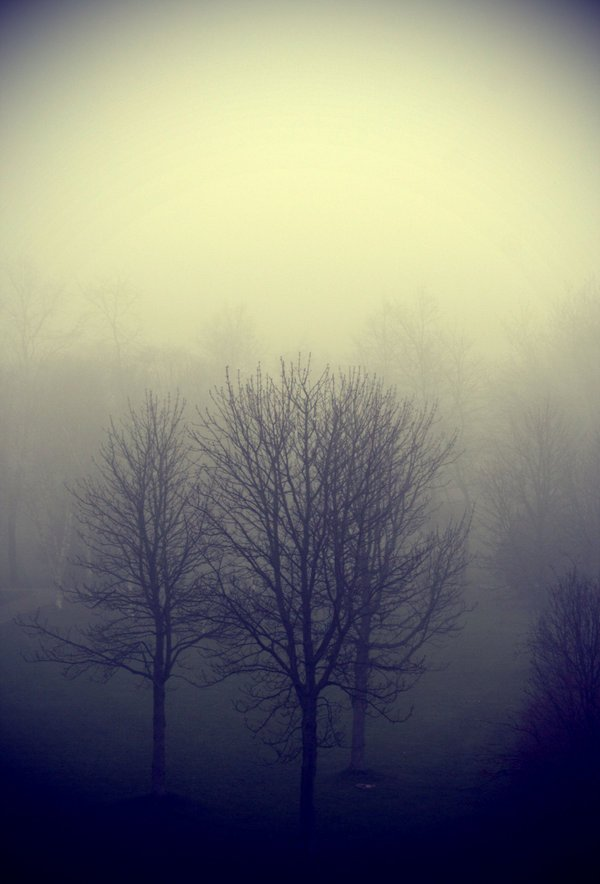 FOG Photography 21 4