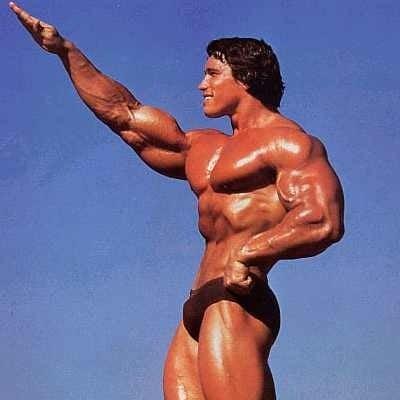 Arnold Schwarzenegger Bodybuilding Beautiful muscle 身體重量訓練、肌肉鍛鍊臨界值與腦神經科學相關分析推論隨想