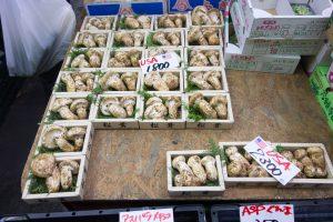 Market Matsutake Kent Wang