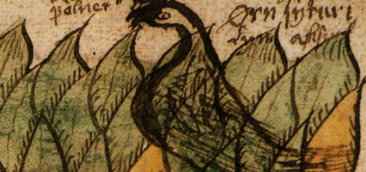 Vedfolnir-Norse-mythology-Vedrfolnir-Eagle