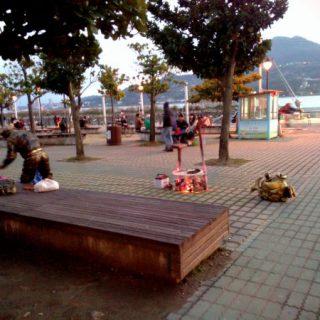 wpid tamsui artist off work sunset vedfolnir 在路上發現了野生雛鳥嗎?不要多管鳥家閒事!