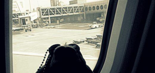 NN熊在機場當觀光客