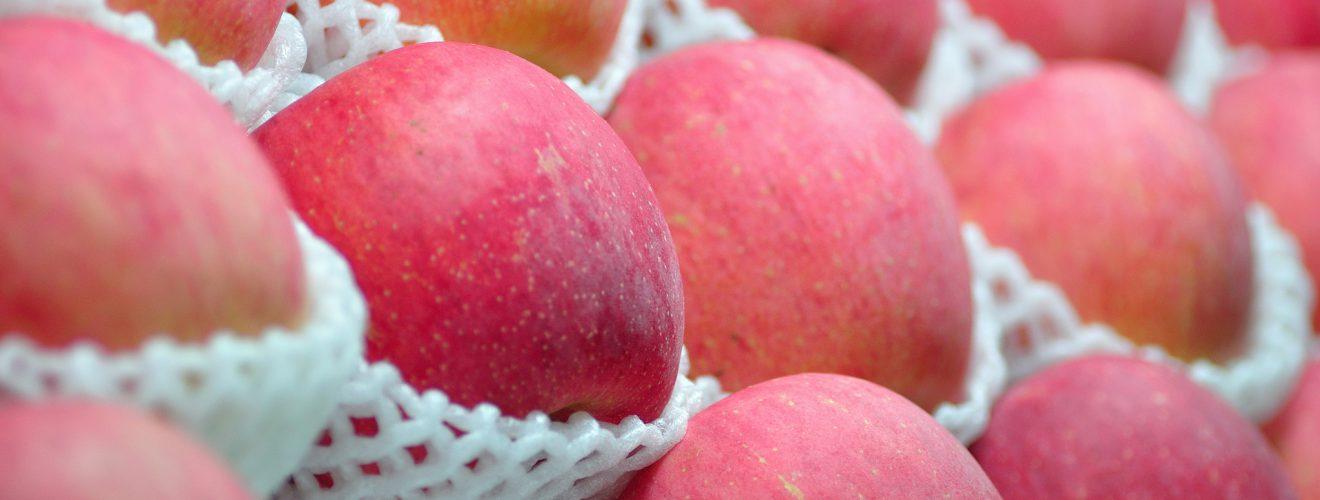 Foodimg-Apple-Fresh-蘋果-Vedfolnir
