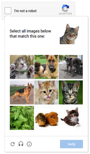Google-Cat_ReCaptcha-Verify