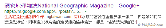 National Geographic Magazine Taiwan Google Search Result Mistake 03 當國家地理雜誌(National Geographic)都出現語言癌時