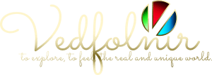 2014 New V Logo Designed Vedfolnir.com