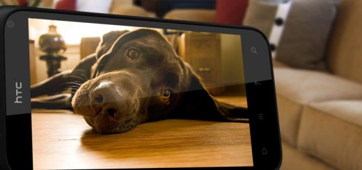 HTC-Smart-Phone-Dog