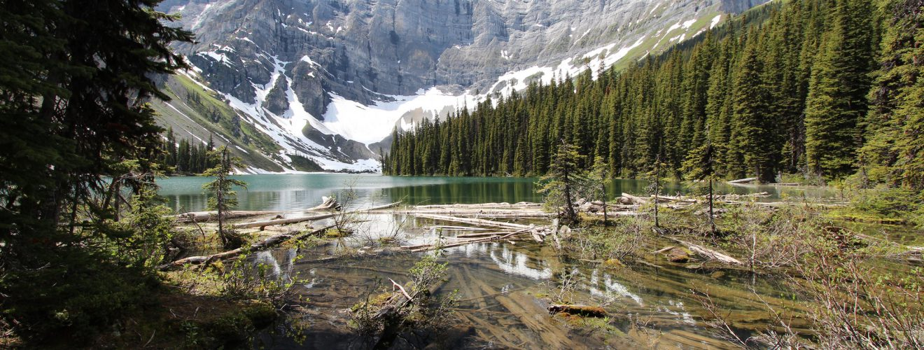 Rawson Lake Kananaskis country Alberta Canada July 2014