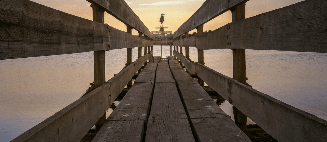 Light-16-Sample-Photo-Sunset-Bridge-Sea-Bird