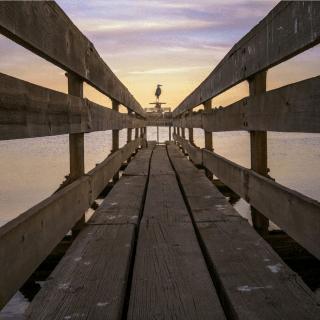 Light-16-Sample-Photo-Sunset-Bridge-Sea-Bird