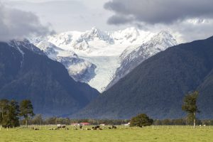 Farms_Mountains_Glacier_Fox_Glacier_New_Zealand