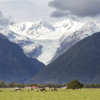 Farms_Mountains_Glacier_Fox_Glacier_New_Zealand