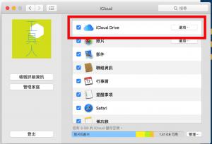 iCloud Drive 設定選項。