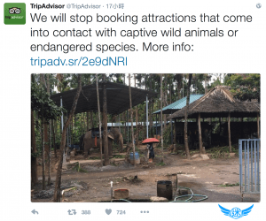 tripadvisor_stop_booking_attractions_animals