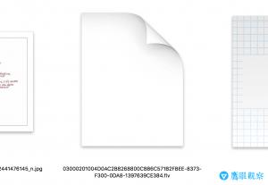 FLY Video Code in apple macbook 下載優酷 Youku 影片、影音影像檔案,透過DVD、USB在大螢幕電視上觀賞