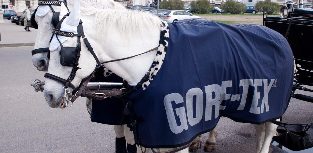 Gore tex horse advertsitment 20110405 GoreTex 狗鐵絲防風寒外套購買 3 重點 戶外登山裝備概念篇