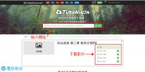 Tubeninja Download Youtube Vimeo Vevo Vine SoundCloud MixCloud Youku Video 下載優酷 Youku 影片、影音影像檔案,透過DVD、USB在大螢幕電視上觀賞