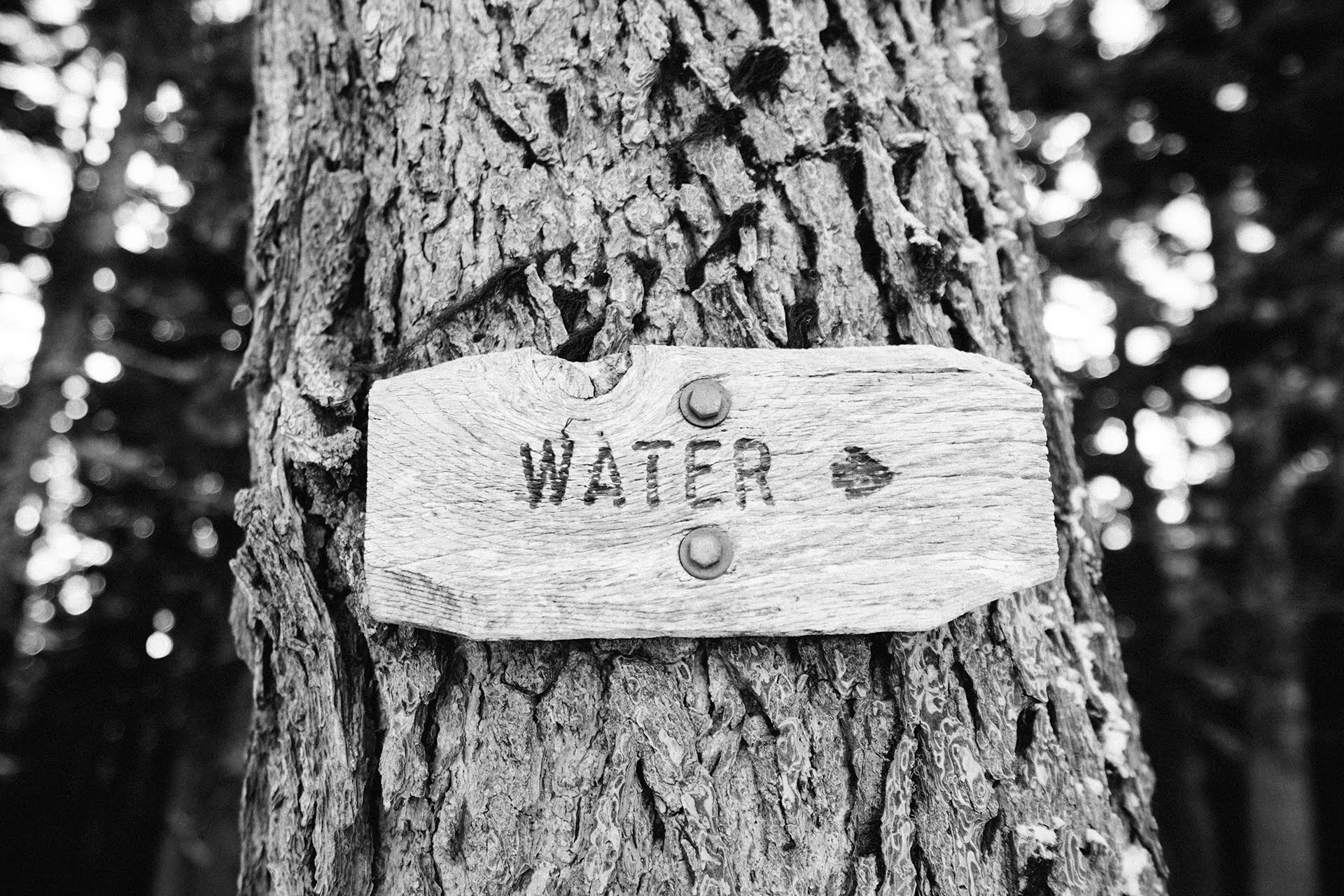 water sign arrow direction 20161213 健康喝水:每人每日飲水量(計算)、適合喝水的時間與正確喝水方式