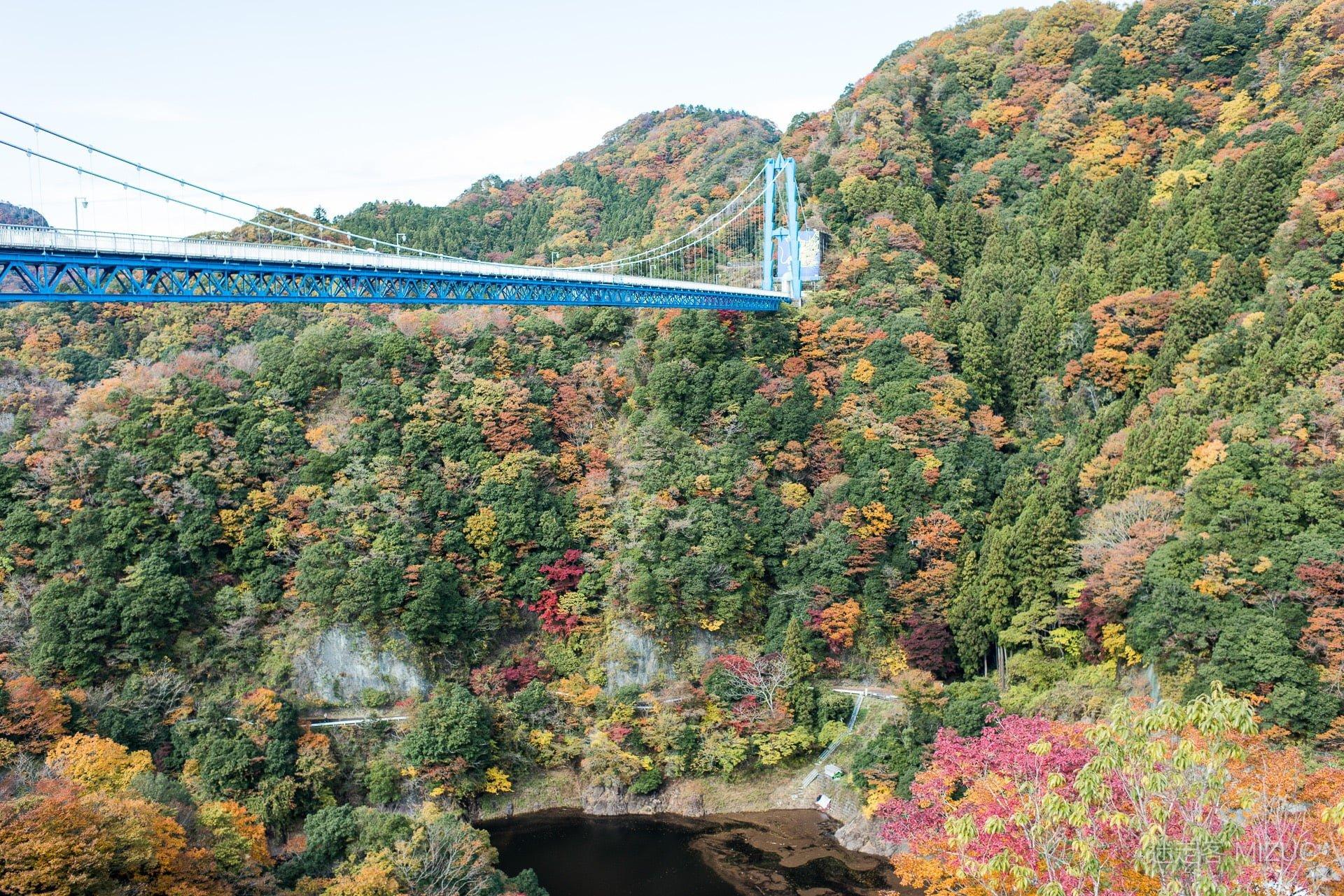 201711 Ibaraki Tochigi Gunma Japan Travel By RentalCar 27 日本自駕旅遊/北關東三縣「茨城、櫪木、群馬」秋天美食、溫泉與瀑布秘境百景(精選照片分享)