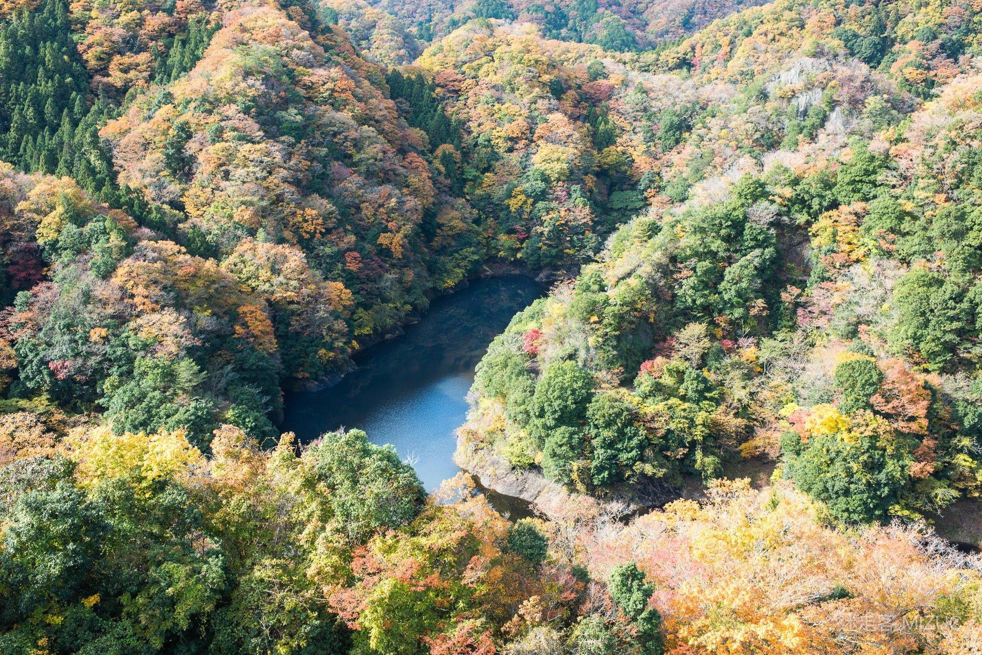 201711 Ibaraki Tochigi Gunma Japan Travel By RentalCar 28 日本自駕旅遊/北關東三縣「茨城、櫪木、群馬」秋天美食、溫泉與瀑布秘境百景(精選照片分享)