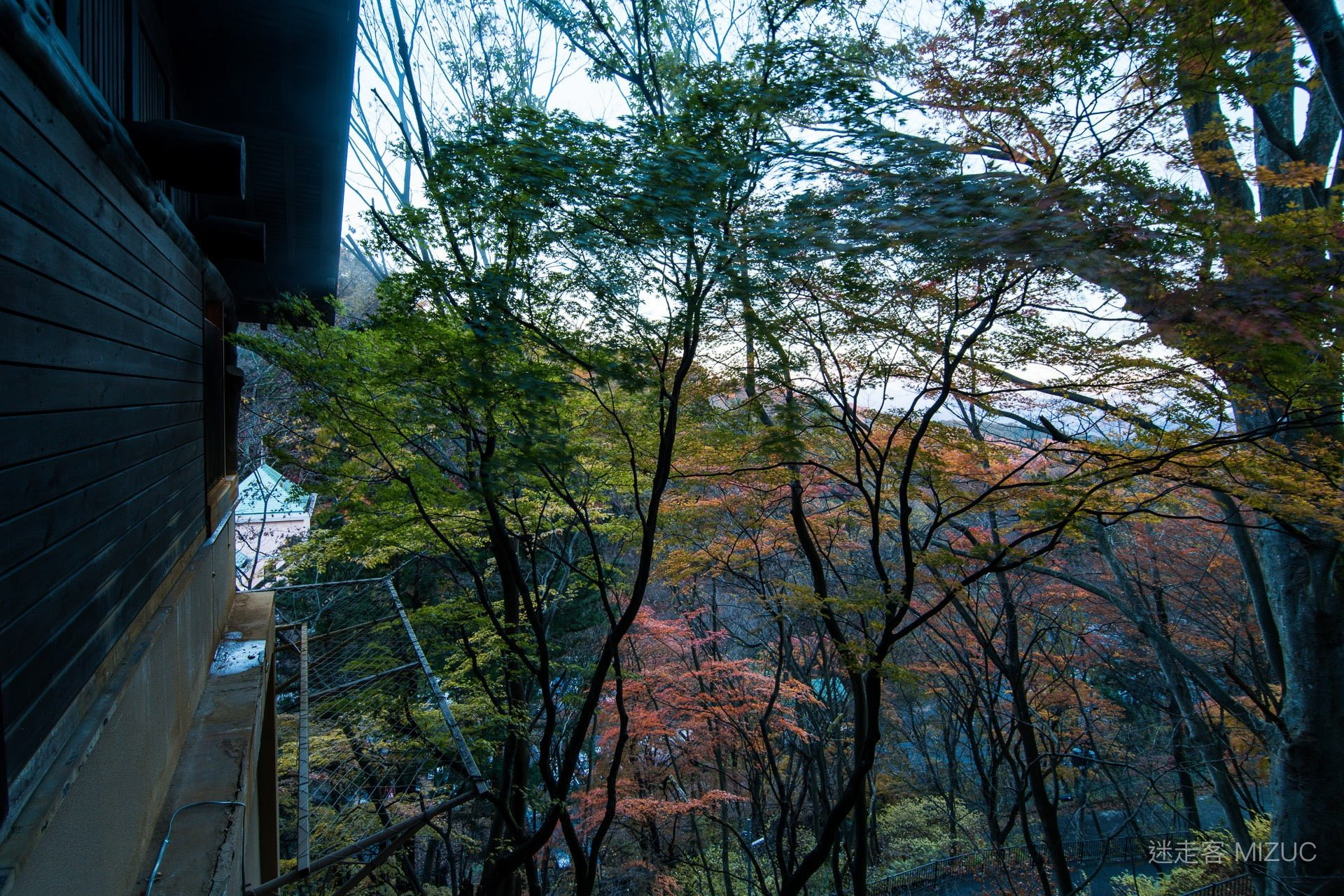 201711 Ibaraki Tochigi Gunma Japan Travel By RentalCar 72 日本自駕旅遊/北關東三縣「茨城、櫪木、群馬」秋天美食、溫泉與瀑布秘境百景(精選照片分享)