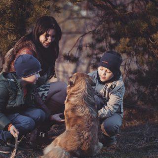 adorable adult boys brothers pet mother 7 種學習技巧培養孩子擁有獨立思考能力