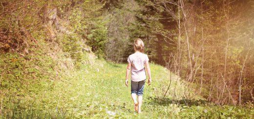 alone away back view beautiful girl forest 南安小熊野放資訊遭壹電視獨家公開 公部門緊急澄清