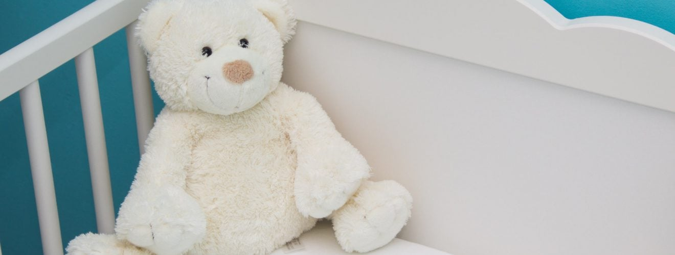 大貓熊、台灣黑熊、石虎、情色大律師都在高雄壽山動物園 baby bed blue blur room bed bear