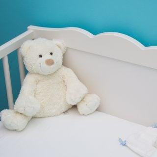 baby bed blue blur room bed bear 大貓熊、台灣黑熊、石虎、情色大律師都在高雄壽山動物園