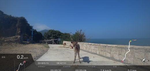 Deer DaQiu Island Matsu ROC Sony FRX X3000R 20180515 馬祖還是連江?福建兩地名稱的歷史淵源由來