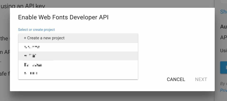 Google Enable Web Fonts Developer API.jpeg