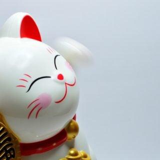 japanese lucky coin cat 108年5、6月統一發票號碼獎中獎號碼 2019