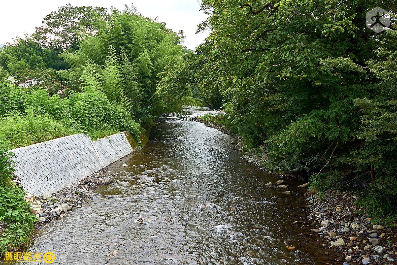 Japan Travel River Stream 20190817153507 日本廢棄小學 🚗 RV 休旅車露營、森林探險之旅(櫪木縣鹿沼市立久我小學)🇯🇵⛺️
