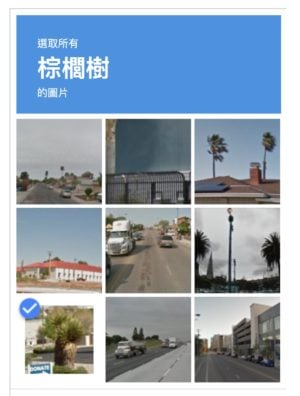 Google verifies robot image captcha with palm Tree Google ReCAPTCHA 圖片驗證是在檢查真人還是驗證智商 💢