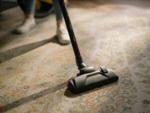 women legs black vacuum cleaner brown white area rug 跳蚤防治之殺蟲劑選擇與除蟲心得