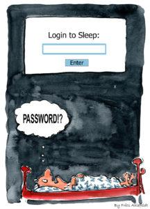 Passoword Login to Sleep 給網管一封信:符合網站重要度的密碼規則必要性